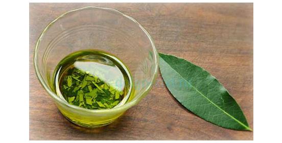 эфирное масло лаврового листа
