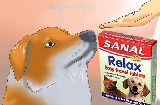 таблетки для животных