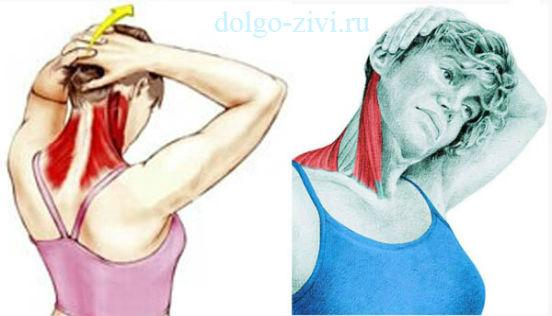 растяжка задних мышц шеи