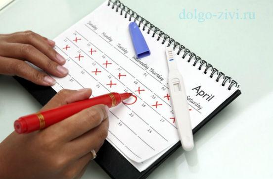 заполнение календаря