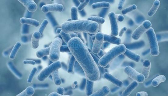микробиом