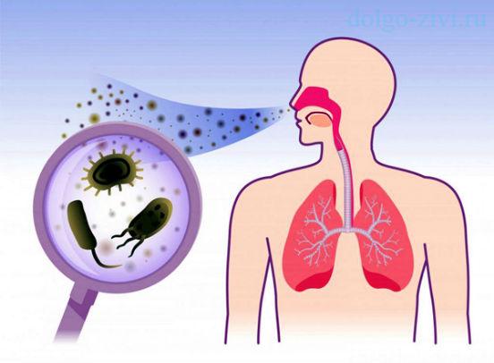 микробы попадают в нос