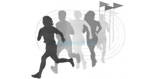 физическая культура личности