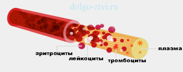 Анализ группа крови расшифровка