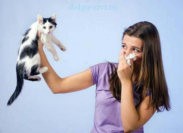 Капли в глаза при аллергии век