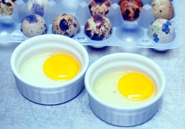 перепелиные яйца в чашечках