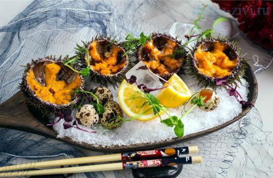 блюдо с морскими ежами