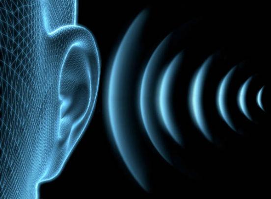 звук и ухо