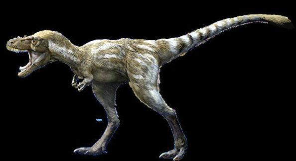 молодой тираннозавр