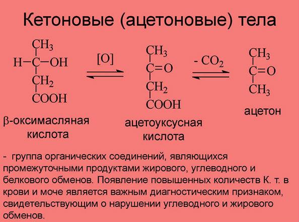 кетоновые тела объяснение