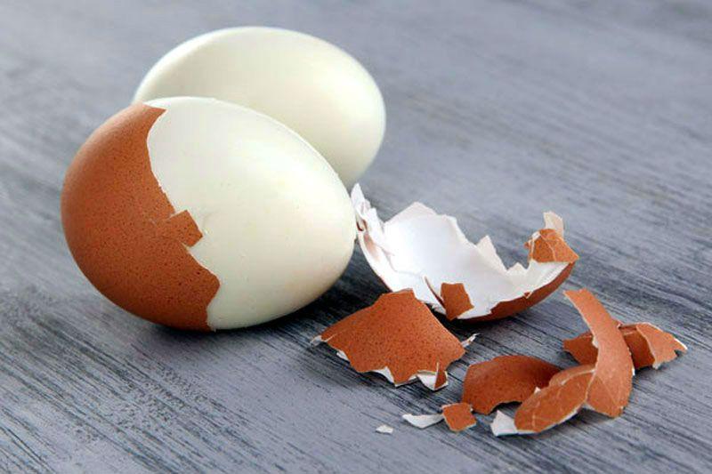 очищенное яйцо