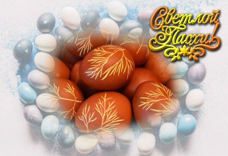 яйца с укропом